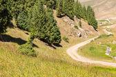 Cpl plateau dans les montagnes de tien-shan — Photo