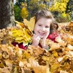 Autumn little girl — Stock Photo #61638905
