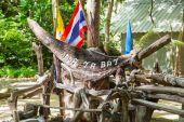 Inscription Maya bay in Jungle — Stock Photo