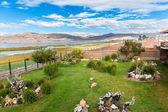 Inviting Courtyard and garden on lake Titikaka — Stock Photo