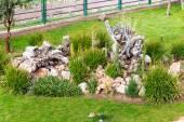 Upscale hotel garden on lake Titikaka — Stock Photo
