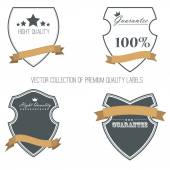 Collection of vintage labels and ribbons. — Stock Vector