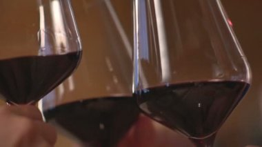 Girls clink glasses of red wine — Stock Video