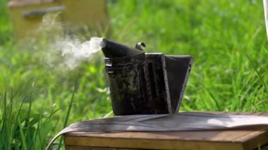 Beekeeper handles beehive with smoke — Stok video