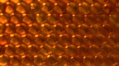 Honey comb background — Stock Video