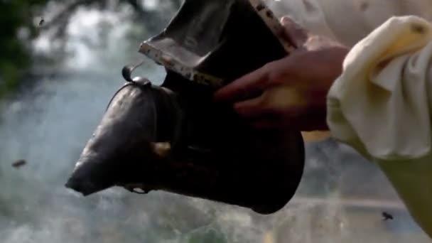Apicultor trabaja en un apiario — Vídeo de stock