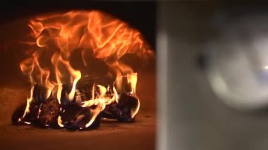 Wood fire in a pizza oven — Stockvideo