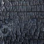 Background burnt wood — Stock Photo #53001767