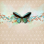 Vintage shabby chic arka kelebek ile — Stok fotoğraf
