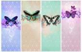 Vintage fondo shabby chic con mariposa — Foto de Stock