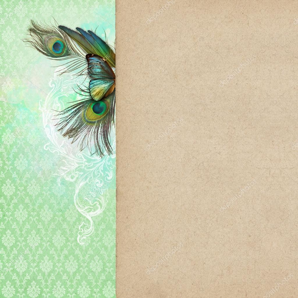 Vintage shabby chic background with butterfly — stock photo ...