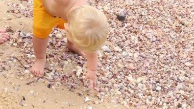Child raises shell holding mother's hand — Vídeo de stock