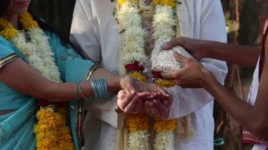 Novia y el novio vierten el arroz en las manos — Vídeo de stock