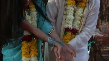 Bride and groom poured rice in hands — Stock Video