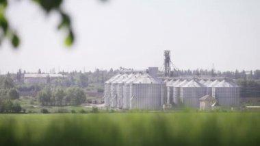 Granary near the green field — Stock Video