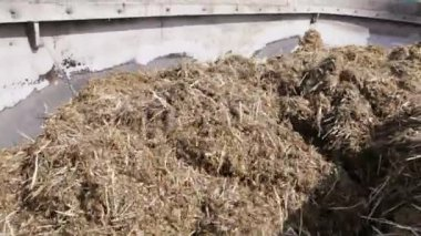 Mixed fodder is produced — Stock Video