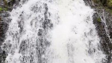 Waterfall in jungle — Stock Video
