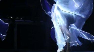 Actress girls dancing — Stock Video