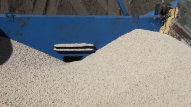 Grain poured out of truck — Stock Video