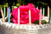 Cake with candles — Stock Photo