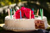 Delicious cake with candles — Stock Photo