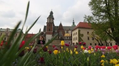 On territory of Royal palace in Wawel. Krakow, Poland. — Stock Video