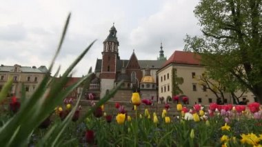Wawel Cathedral in Krakow, Poland. — Stock Video