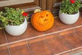 Halloween in Krakow. — Stock Photo