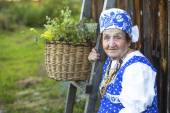 Grandmother in the village — Stock Photo