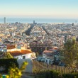 Panorama of Barcelona from park Guel — Stockfoto #61984489