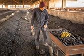 Man work at  Brick Factory in Nepal — Stock Photo