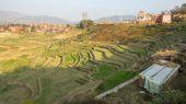 Fields near the town of Bhaktapur. — Stock Photo