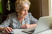 Elderly woman working on a laptop. — Stock Photo