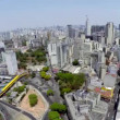 Aerial view of Sao Paulo city in a beautiful day — Stock Video #55988313