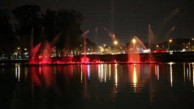 The fountains in Ibirapuera Park, Sao Paulo, Brazil — Vidéo