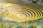 Peru, Pisac - Inca ruins in the sacred valley in the Peruvian Andes — Stock Photo
