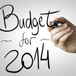 Budget for 2014 hand writing — Foto Stock #62884915