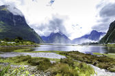 Milford Sound in New Zealand — Stock Photo