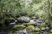 Wasserfall und blue stream — Stockfoto
