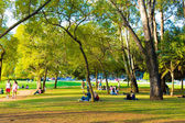 SAO PAULO, BRAZIL - CIRCA AUGUST 2014: People enjoy a hot day in Ibirapuera Park. Ibirapuera Park is the largest park in Sao Paulo, Brazil. — Stock Photo