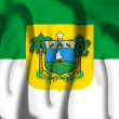 Flag of Rio Grande do Norte — Stock Photo #66053653