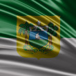 Flag of the State of Rio Grande do Norte — Stock Photo #66059207