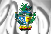 Flag of Coat of arms of Goias — Stock Photo