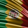 Flag of the States of Los Angeles — Stock Photo #66060295