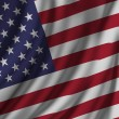 United States Flag — Stock Photo #66060451