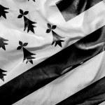 Amazing Flag of Brittany — Stock Photo #66061347