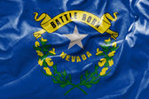 Flag of the State of Nevada — Stock Photo