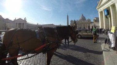 Vatican in Rome — Stock Video