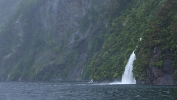 Milford Sound Fjord Waterfall in New Zealand — Vidéo