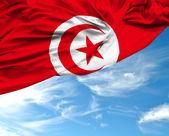 Tunisia waving flag on a beautiful day — Stock Photo
